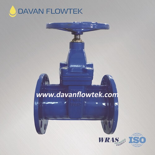 PN25 resilient seat gate valve