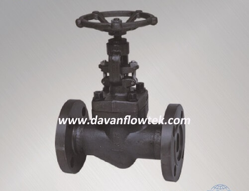 api forged globe valve carbon steel class 1500