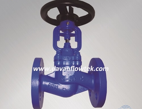 bellow globe valve cast steel PN16