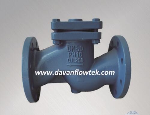 cast iron lift check valve PN16