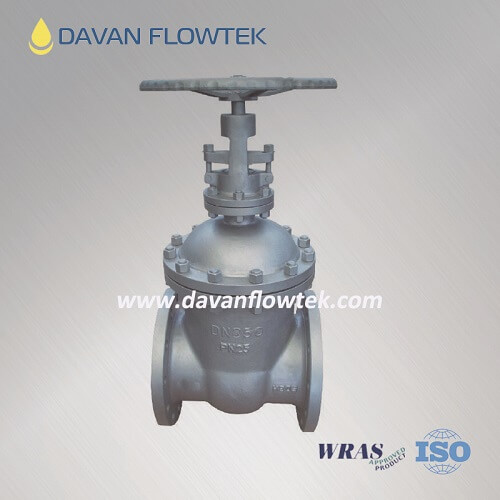 din stainless steel gate valve standard PN25
