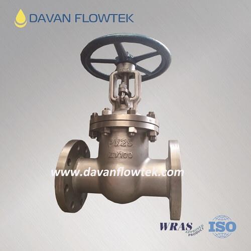 gost gate valve wcb PN25 flange type