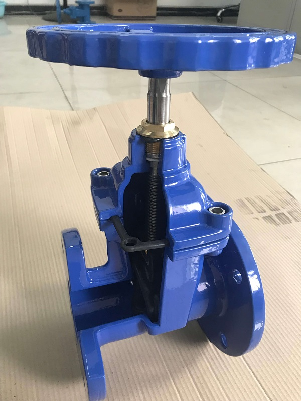 gate valve sample